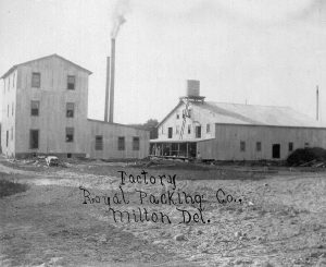 They Royal Packing Co. cannery, another of N. W. White's ventures, ca. 1907