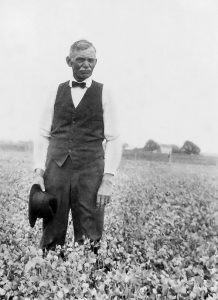 John Ponder Isaacs, father of J. S. Isaacs, in a pea field (date unknown)